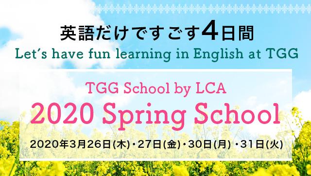 SPRING SCHOOL 2020